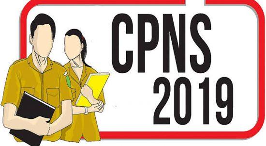 cpns 2019 ok