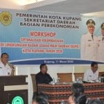 workshop pemkot