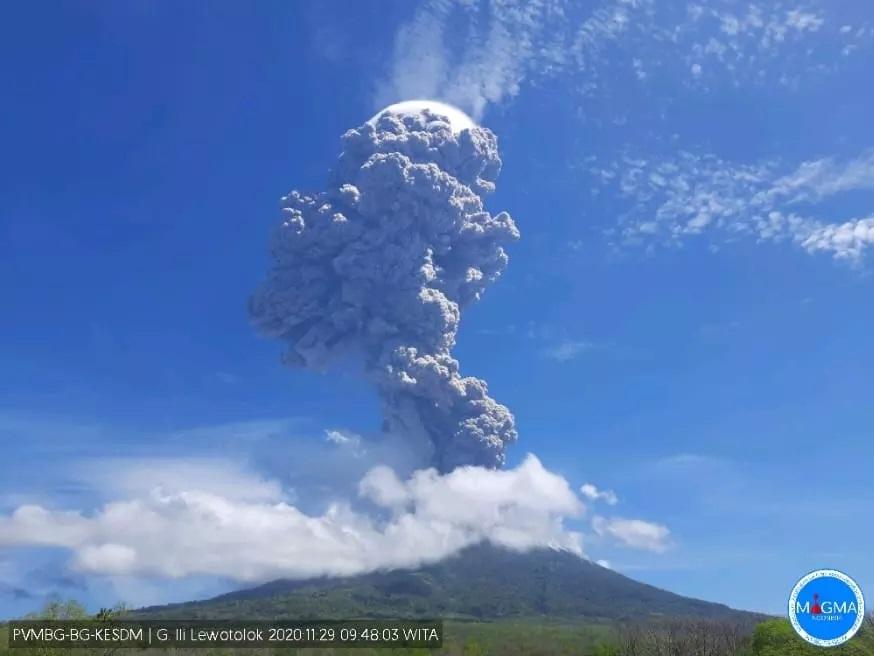 gunung ile lewotolok kembali erupsi warga radius 2 km diminta tak lakukan aktivitas OXt6CzOUyg