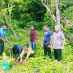 UKAW Kupang