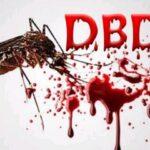nyamuk DBD