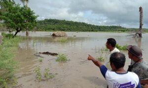 banjir di sawah