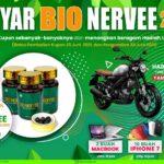 gebyar bio nervee 1