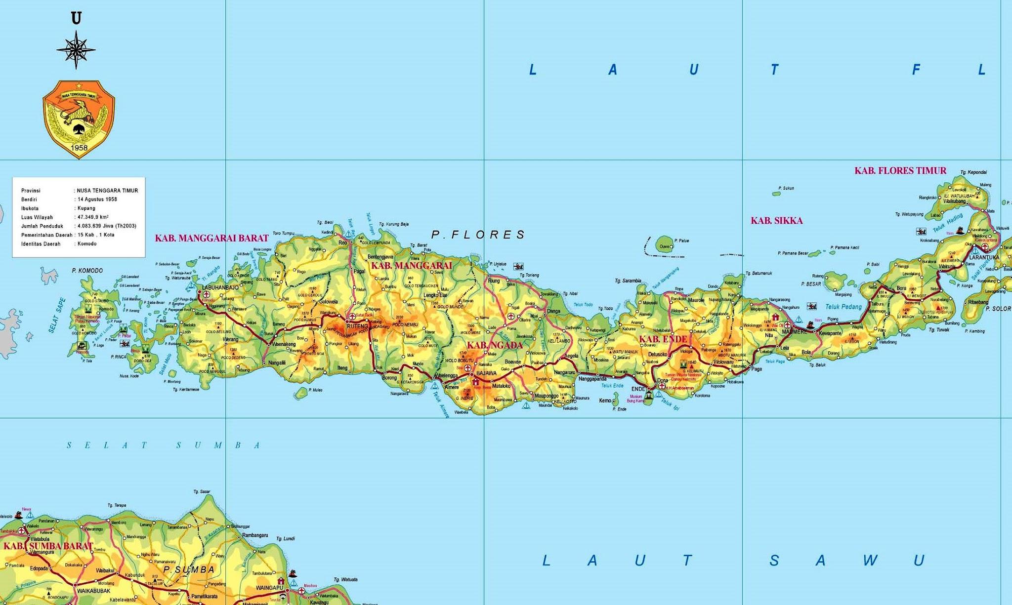 peta pulau flores