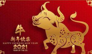 tahun baru imlek 2021 merupakan tahun kerbau logam
