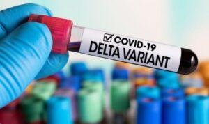 ilustrasi covid varian delta antara